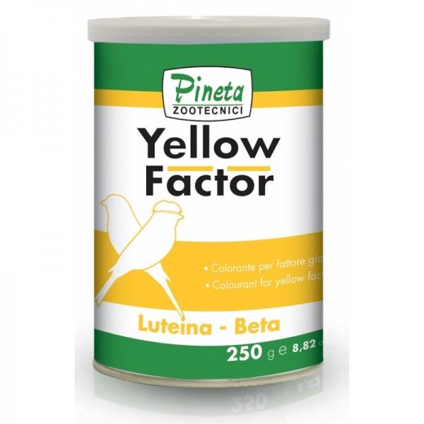 PINETA-YELLOW FACTOR, 250gr