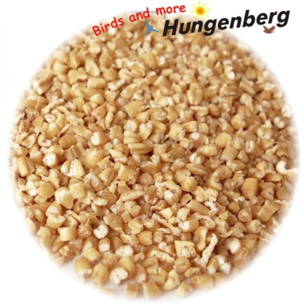 Hungenberg - Σπασμένη Βρώμη - 1 κιλό